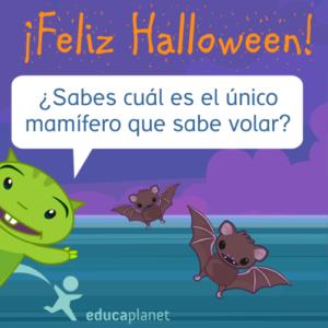 Halloween murciélago