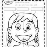 Ficha gratis partes de la cara infantil