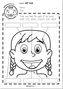 Parts of the face Worksheet printable free