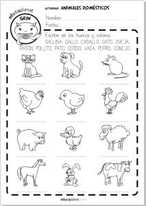 animales domesticos ficha gratis español inglés