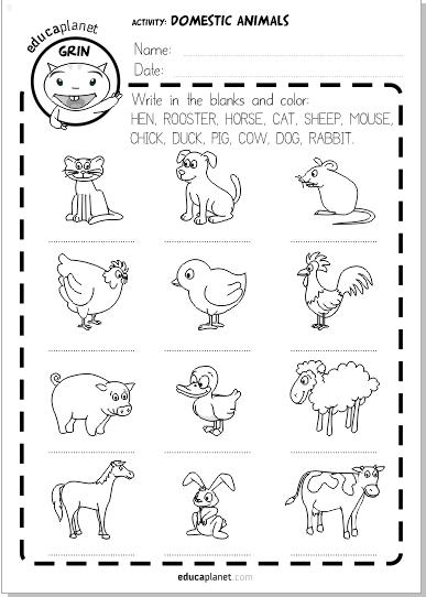 Animales Domesticos Ficha Imprimible Infantil Gratis Educaplanet Apps